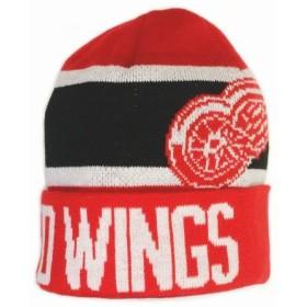 CAP NHL DETROIT SR